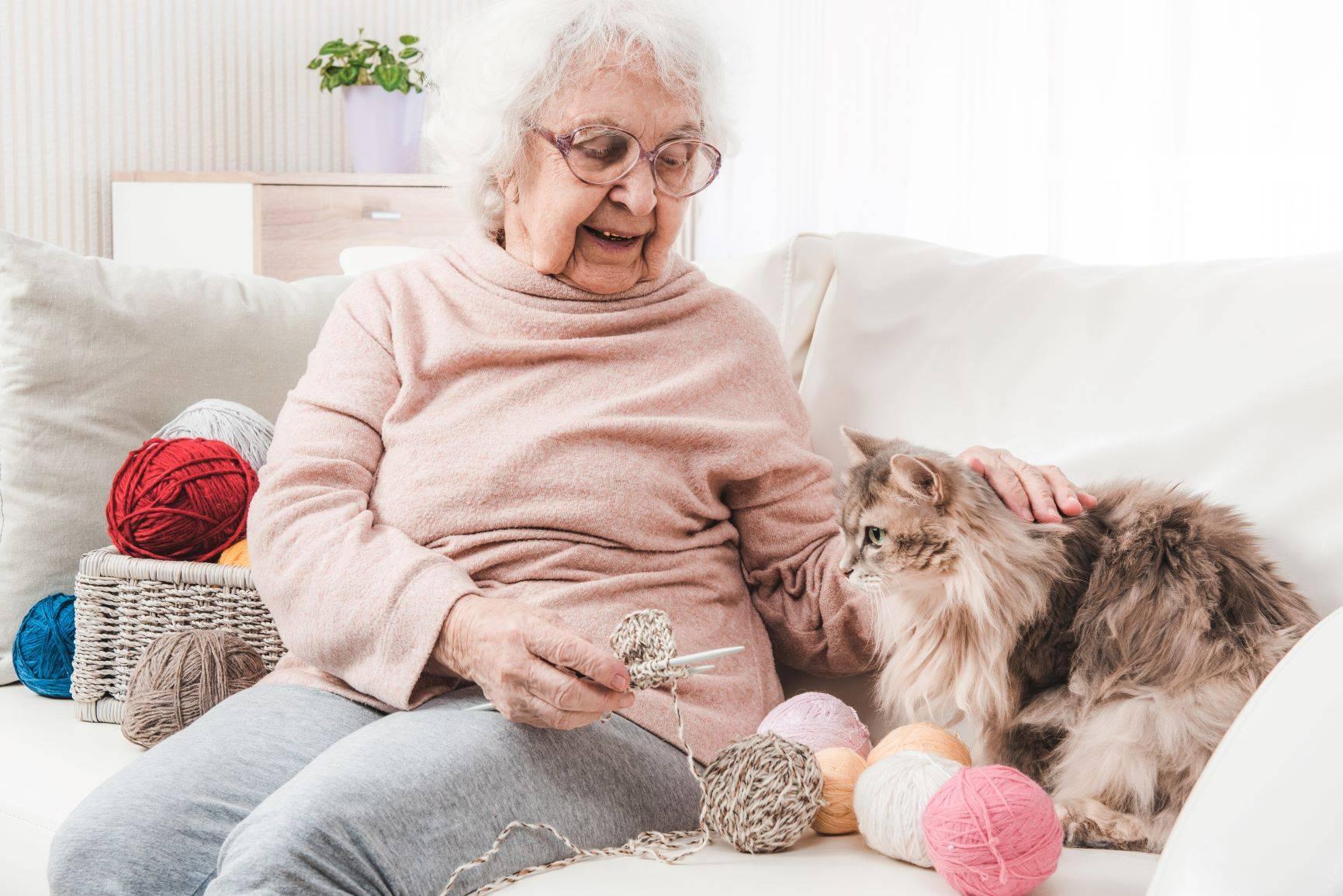 Kototerapia aktywizuje seniorów.
