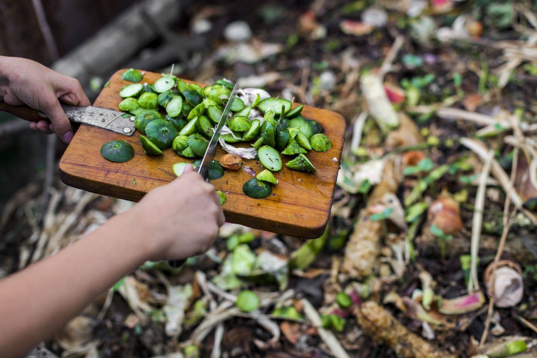 Jak zrobić kompost i jakie odpady powinny do niego trafiać?