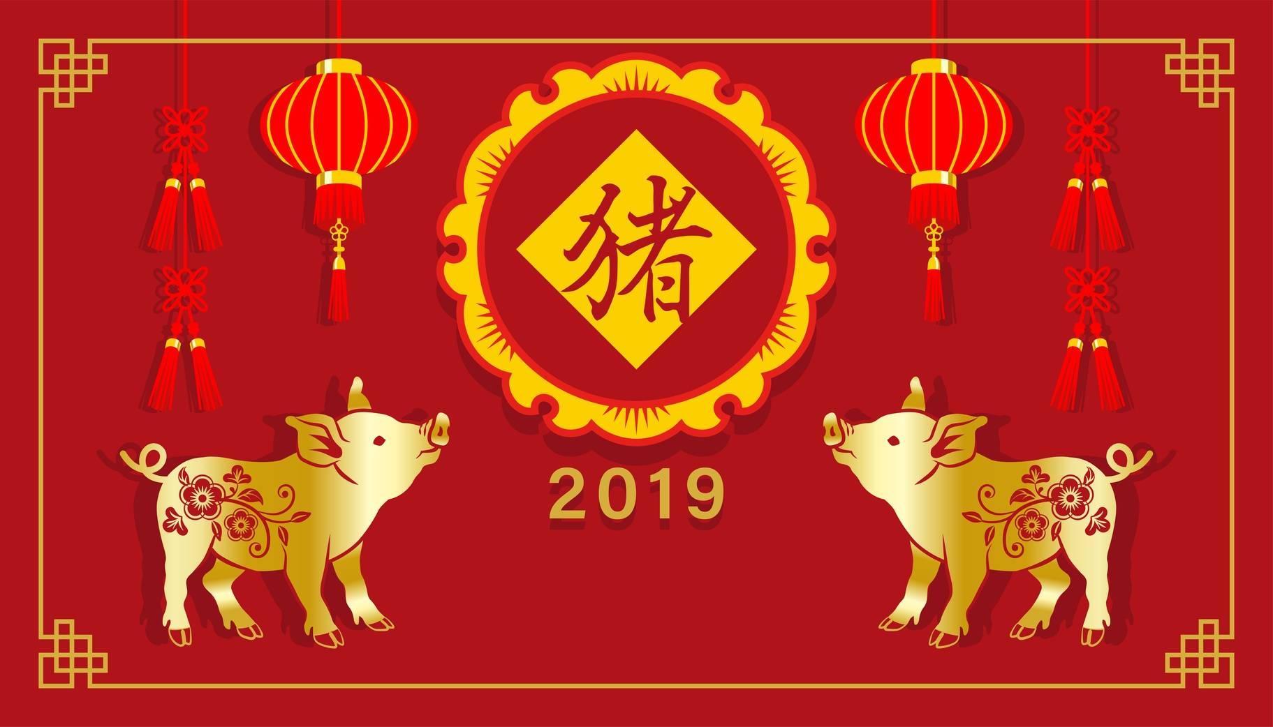 Chiński zodiak - 2019 rok świni.