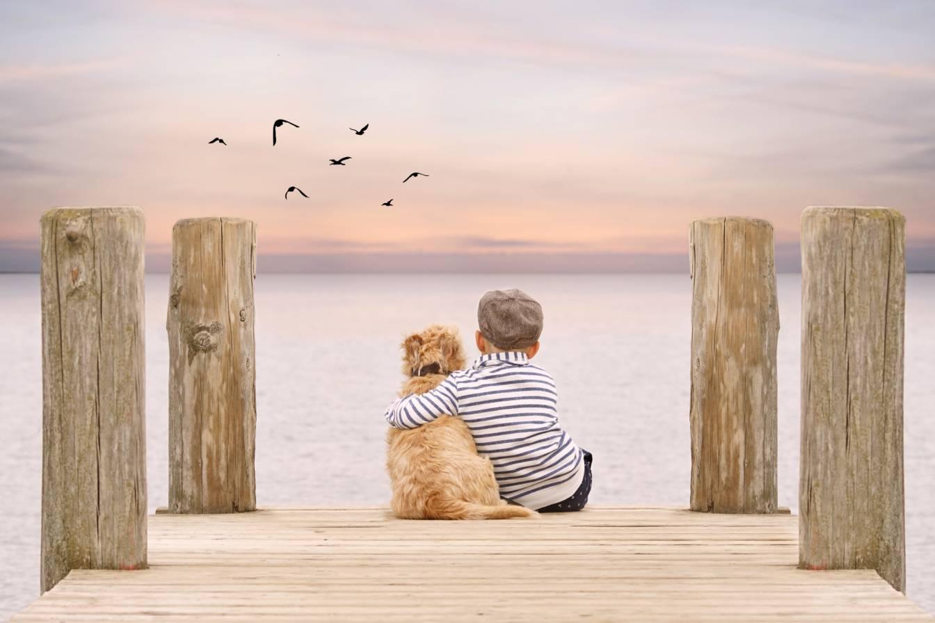 Przyjaźń dziecka z psem - jak pomóc dzieciom zbudować relację ze zwierzakiem domowym? Mały chłopczyk siedzi na skraju molo nad jeziorem i przytula swojego pieska.