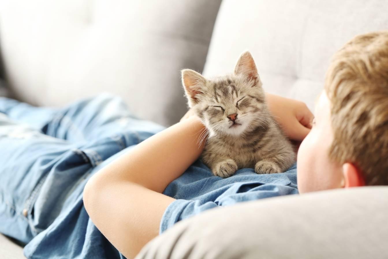 O relacjach dzieci ze zwierzętami domowymi. Chłopczyk leży na kanapie i przytula kotka.
