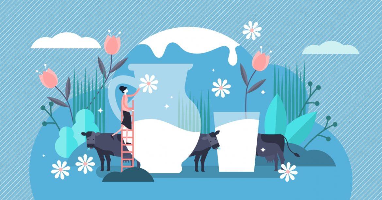 Colostrum - w jaki sposób siara wzmacnia odporność? Grafika przedstawiająca wielki dzbanek i szklankę z mlekiem na niebieskim tle, wokół których chodzą krowy.