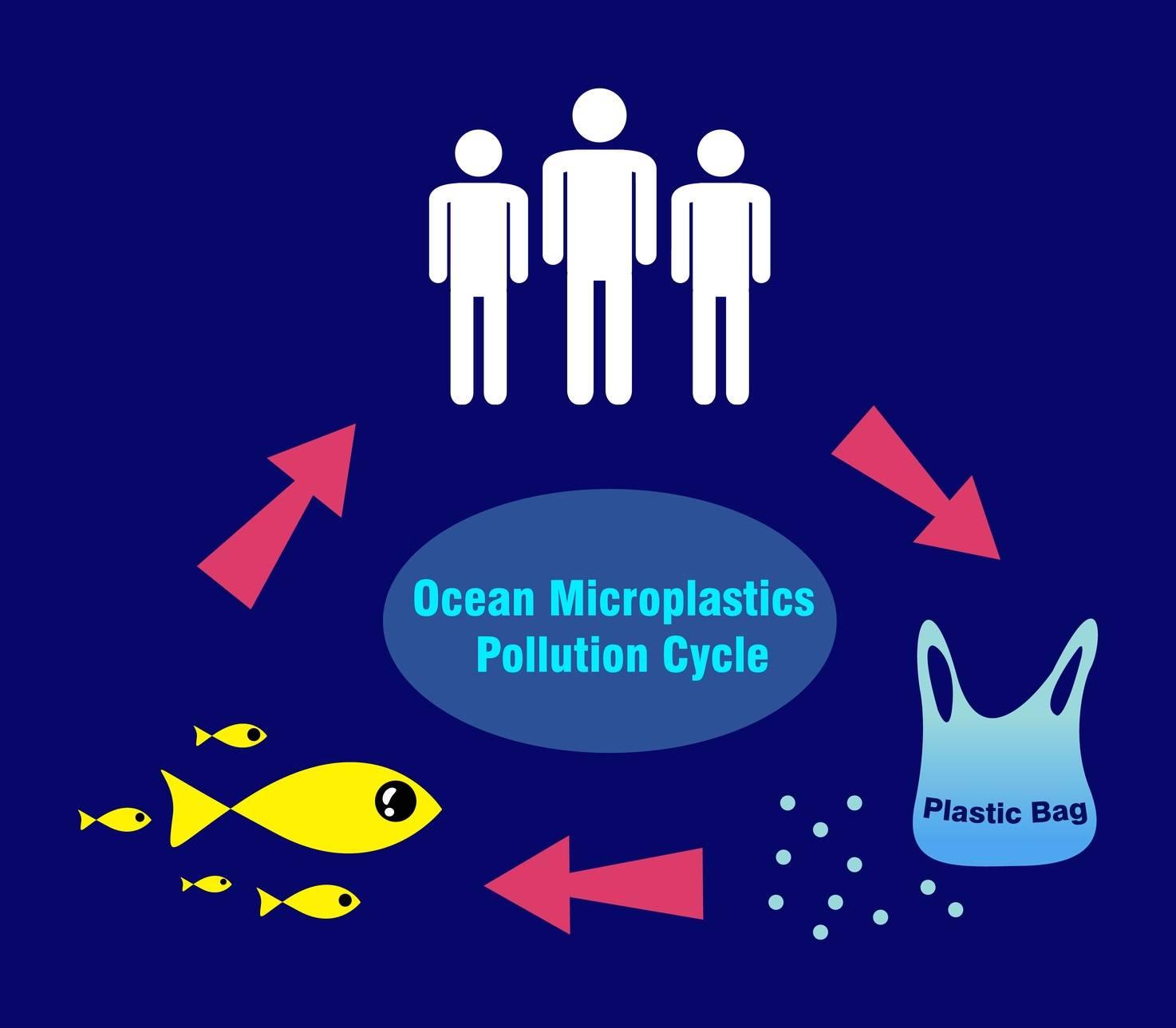 Mikroplastik - cykl zanieczyszczenia plastikiem.