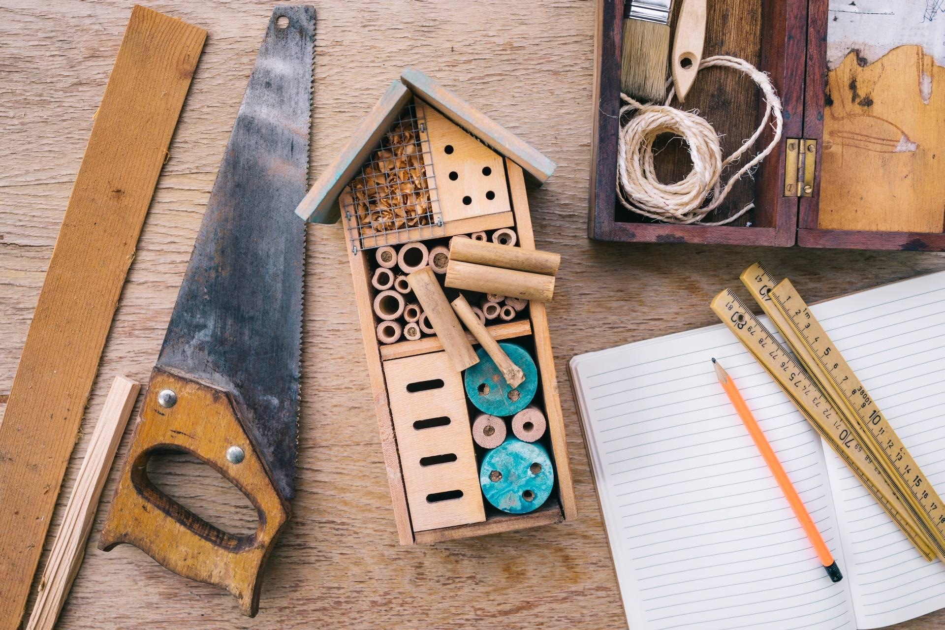 Jak zbudować domek dla owadów i hotel dla pszczół?