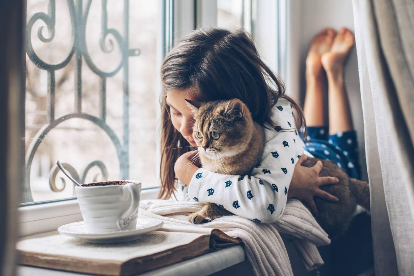 Alergia na sierść - jak sobie z nią poradzić? Dziewczynka przytula kota leżąc na parapecie.