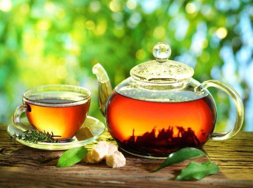 herbata czarodziejski napoj chinskiego cesarza