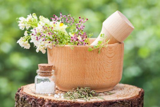 Phytolacca - lek homeopatyczny na różne dolegliwości.