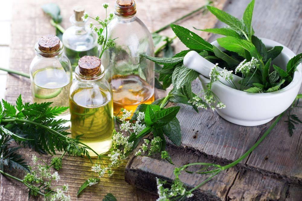 Sposoby na katar i przeziębienie. Szklane butelki z różnymi olejami stoją na starym drewnianym stole, obok stoi biały moździerz wypełniony liśćmi świeżych ziół. Wokół również leżą porozrzucane listki ziół.