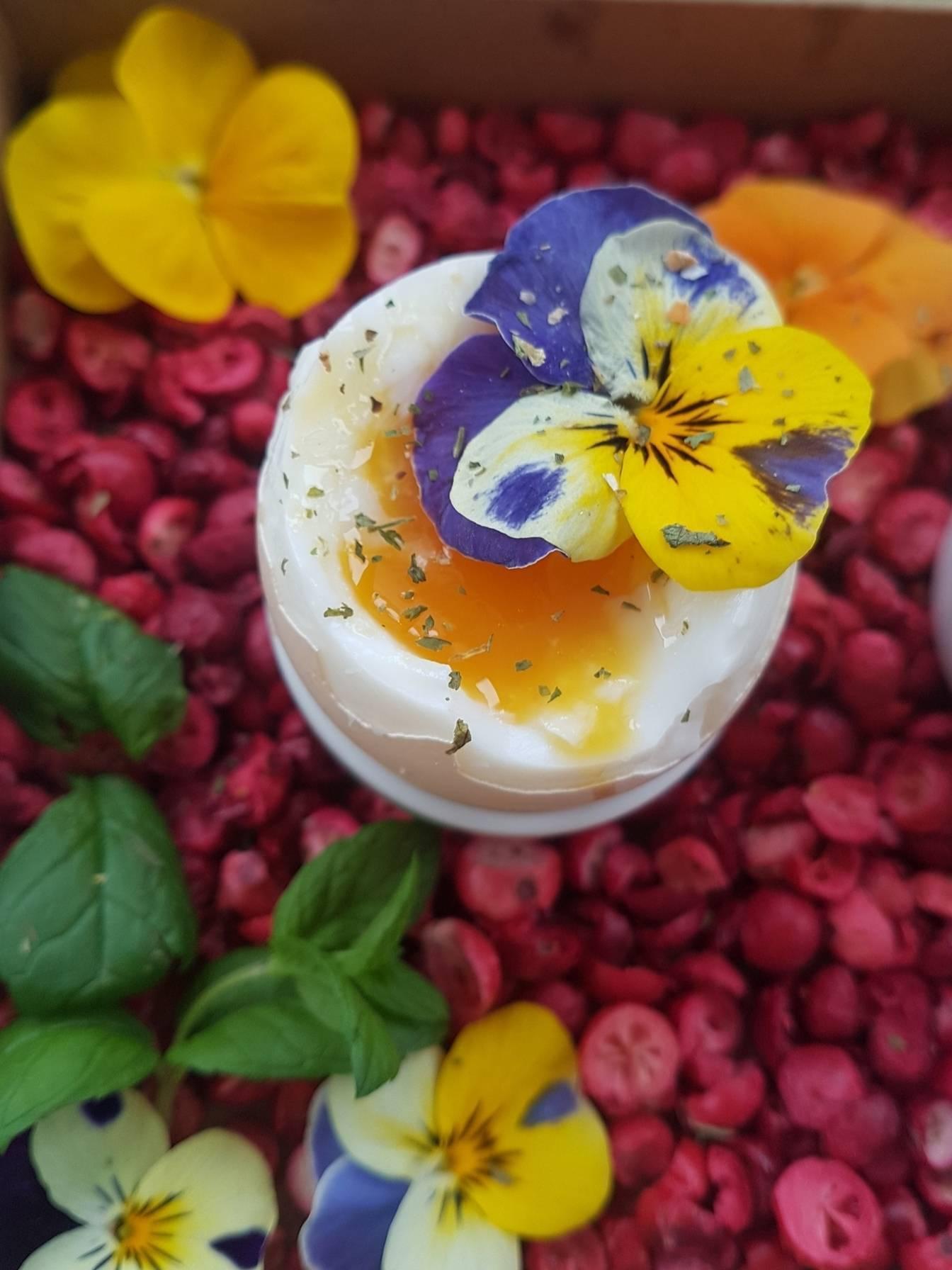Jajko na miękko z bratkiem i żurawiną. Kaj wykorzystać kwiaty jadalne w kuchni? Przepisy Agnieszki Żelazko.