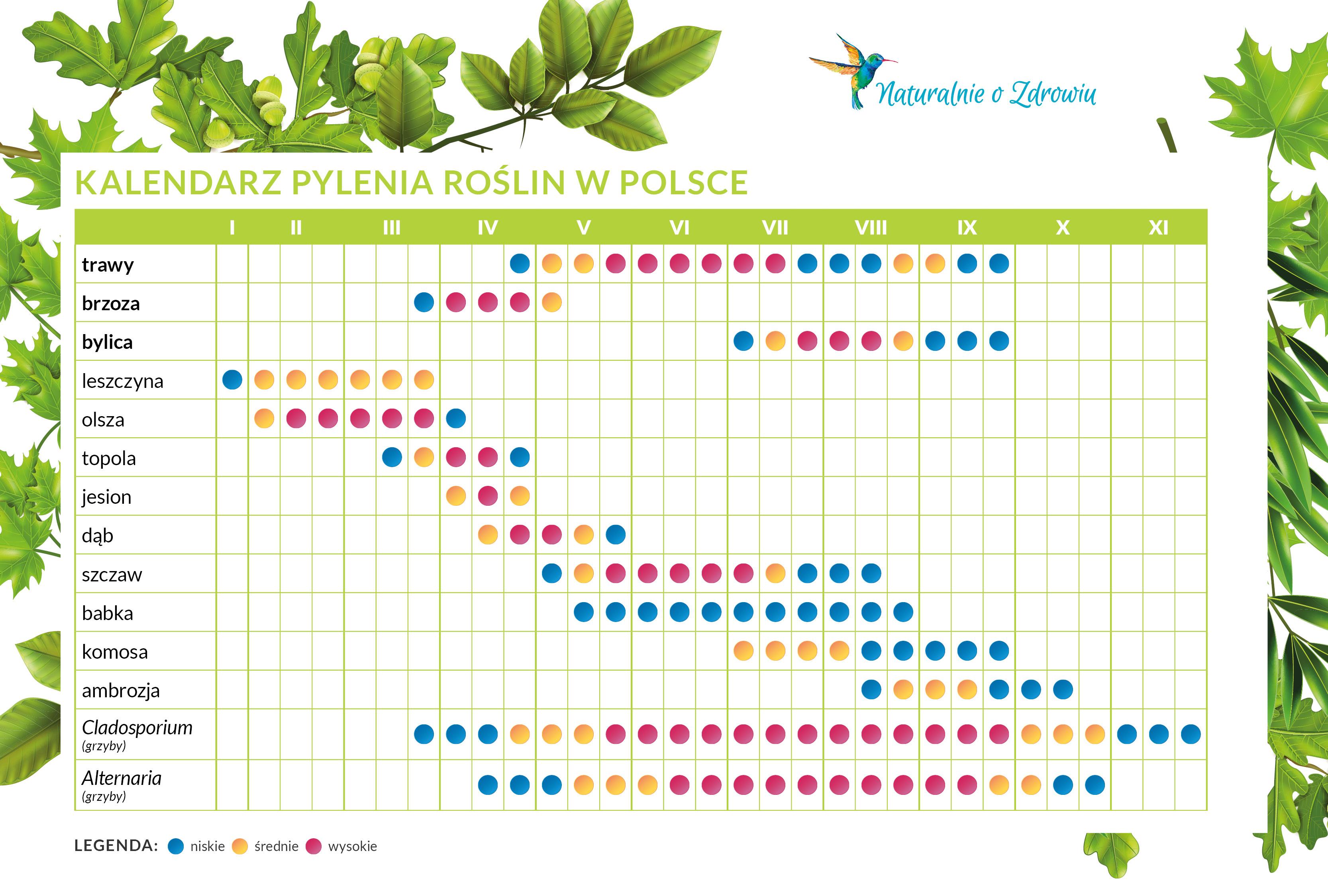 Kalendarz pylenia roślin w Polsce   Alergie u dzieci i dorosłych   Naturalnie o zdrowiu