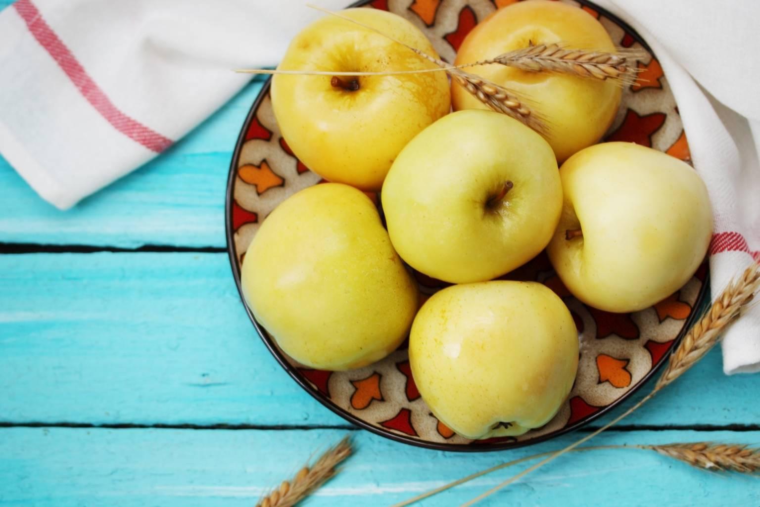 Przepis na kiszone jabłka. Żółte jesienne jabłka na talerzu na niebieskim drewnianym stole.
