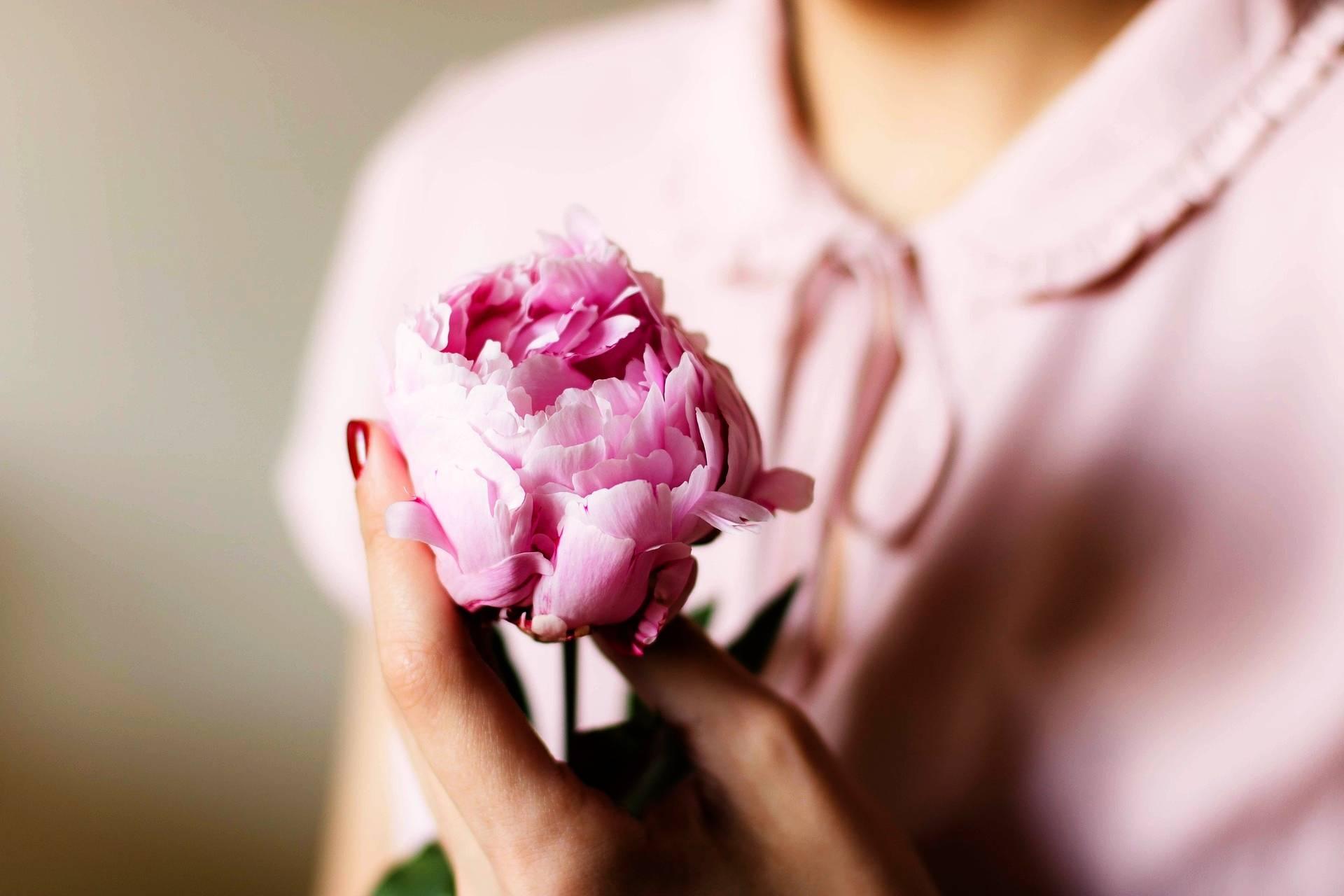 Jak wygląda prawidłowa miesiączka i jak zadbać o jej prawidłowe yin i yang? Jakie są przyczyny zaburzeń cyklu menstruacyjnego w medycynie chińskiej? Kobieta w różowej bluzce trzyma różową piwonię.
