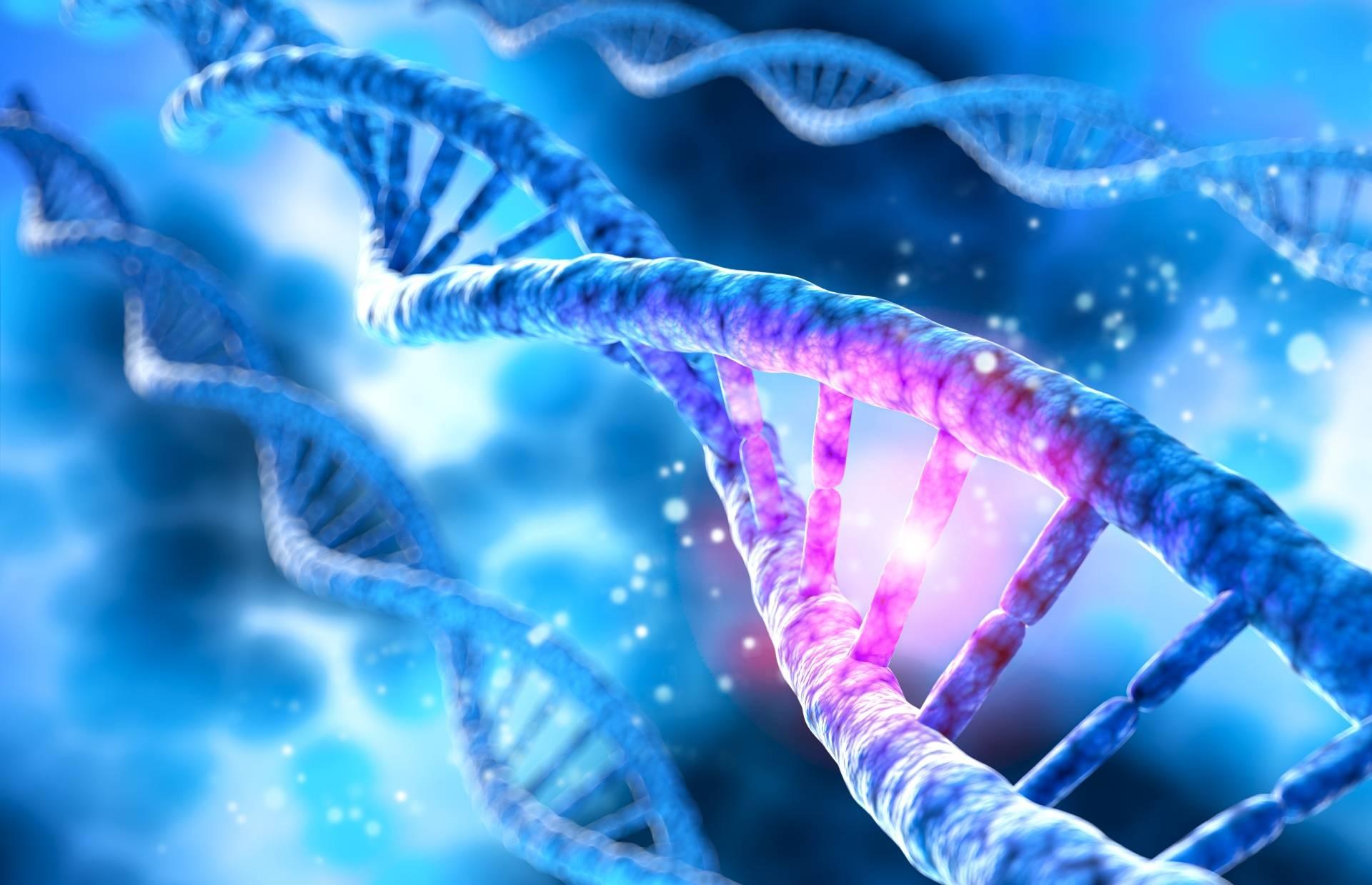 Genodieta - jak wykonać badanie DNA w domu?