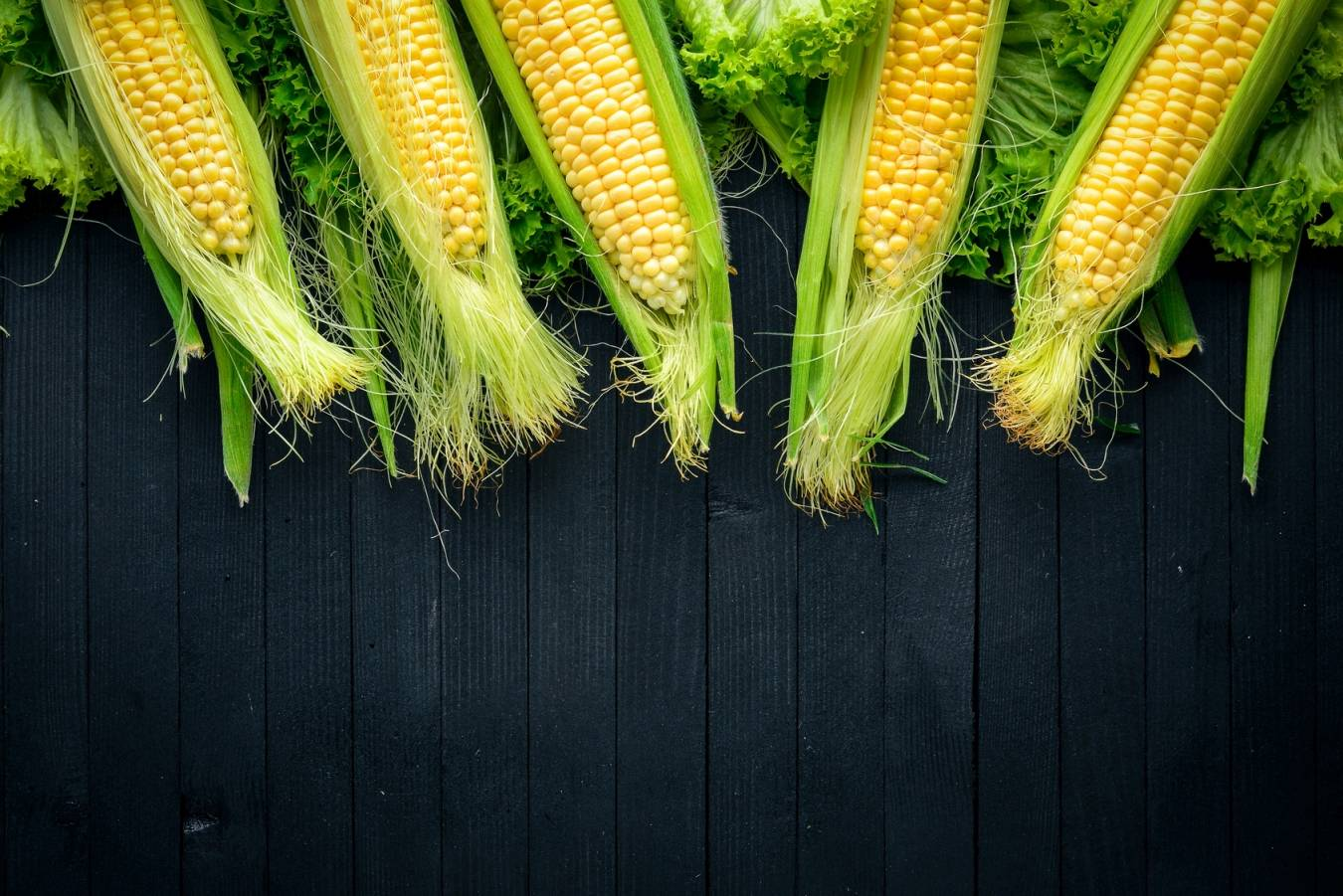 Zastosowanie znamion kukurydzy w medycynie chińskiej.