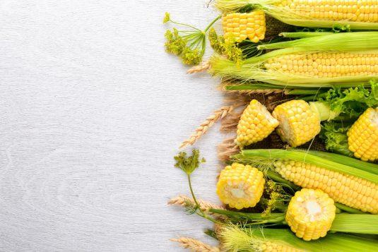 Kukurydza - właściwości i zastosowanie znamion kukurydzy.