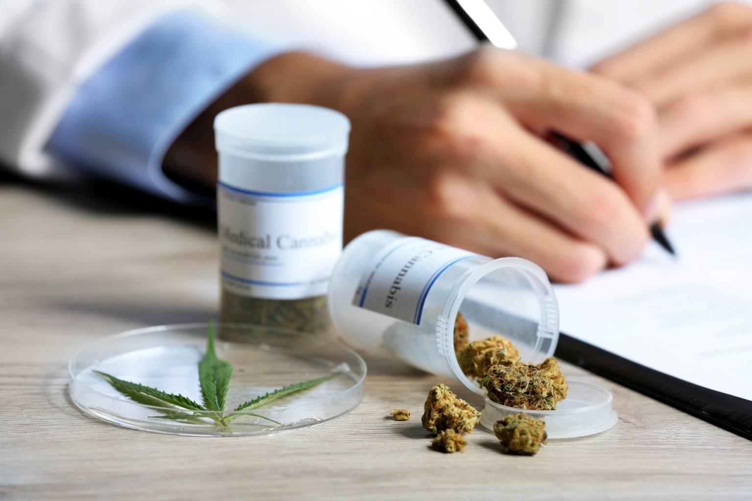 Lekarz przepisuje medyczną marihuanę. Jak działają leki z konopi?