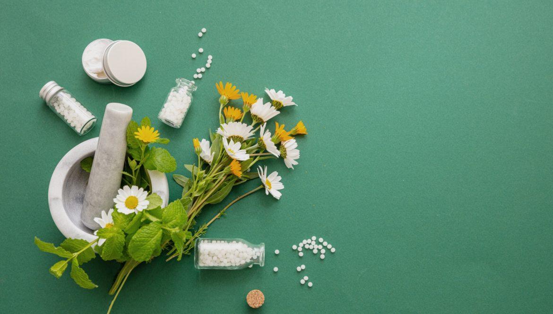 Actaea racemosa - lek homeopatyczny na kobiece dolegliwości. Granulki leków homeopatycznych i bukiet kwiatów polnych na zielonym tle.
