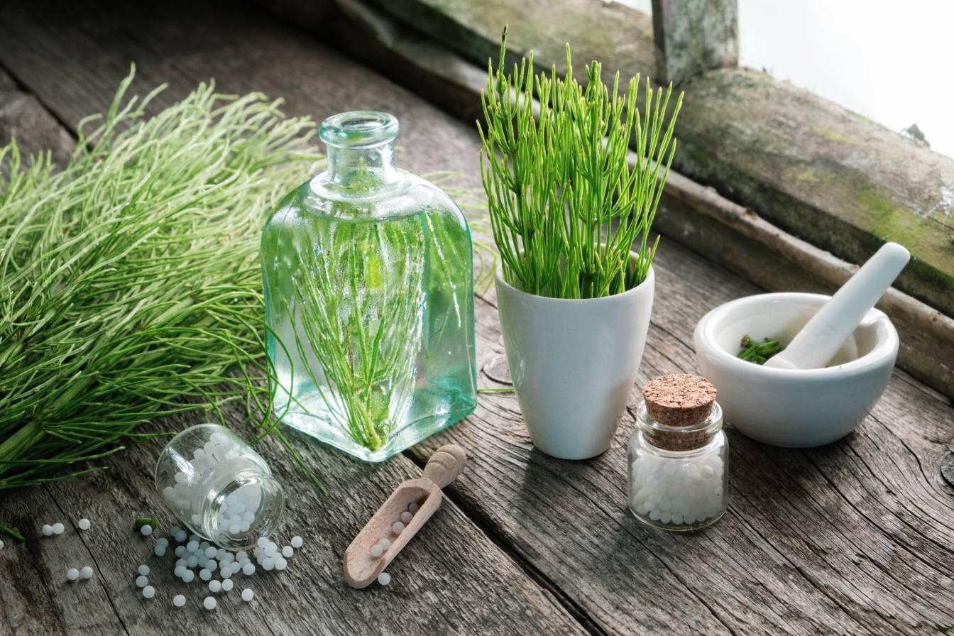 Skrzyp w lekach homeopatycznych - na co go stosować? Ziele skrzypu w białym kubku, moździerzu i na blacie oraz leki homeopatyczne.