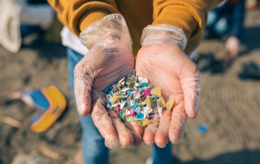 Mikroplastik - jak bardzo jest szkodliwy?