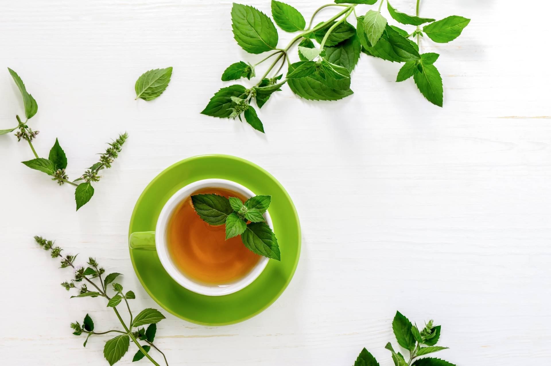 Zielona herbata i napary ziołowe w diecie przeciwgrzybiczej. Napar z mięty w filiżance na białym blacie. Obok leżą listki mięty.
