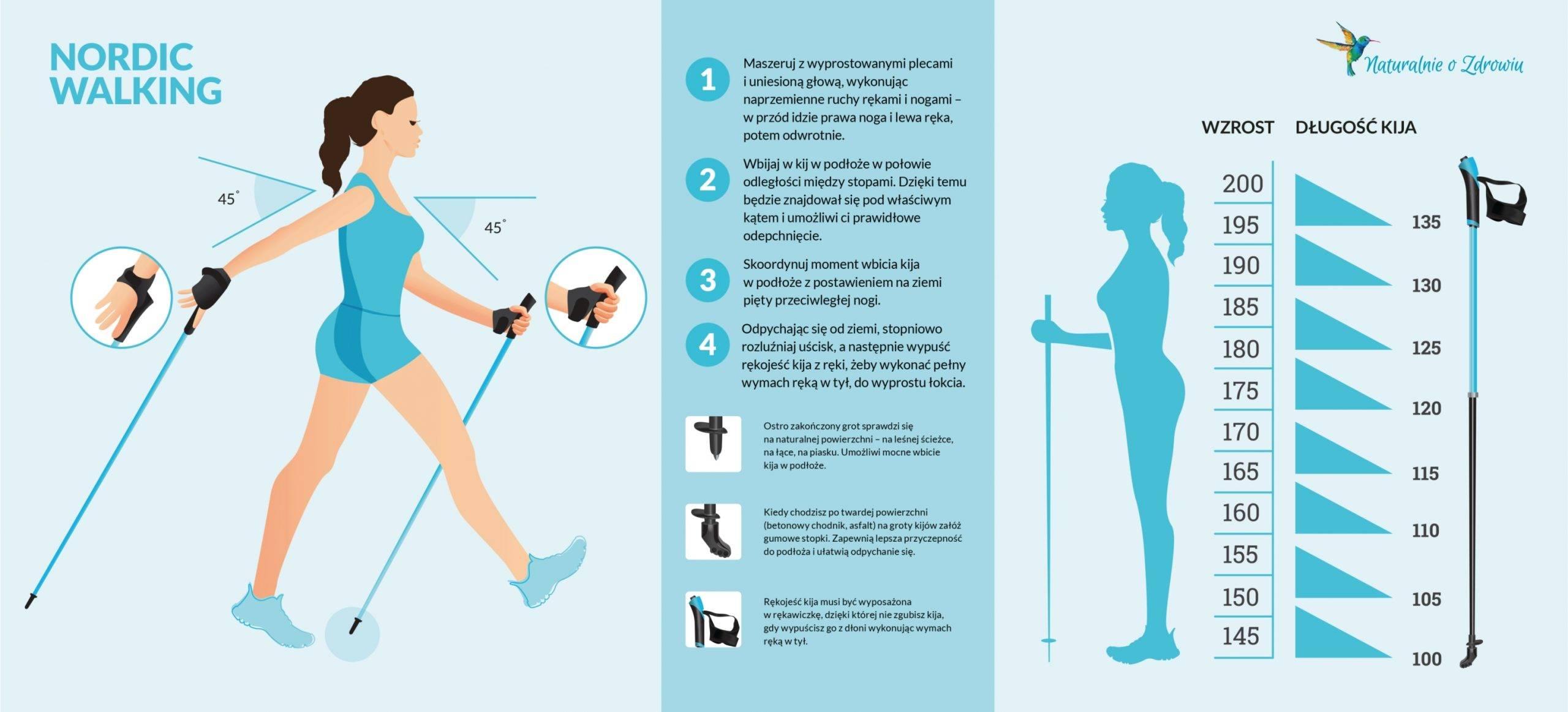 Nordic walking dla początkujących - jak poprawnie ćwiczyć? Infografika