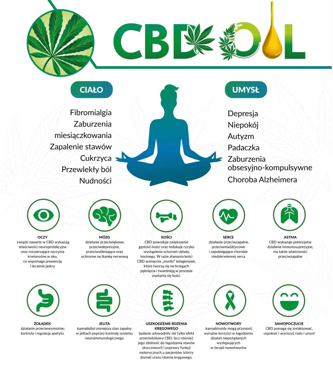 Olejek CBD - zastosowanie. Na co pomagają konopie lecznicze? Infografika.