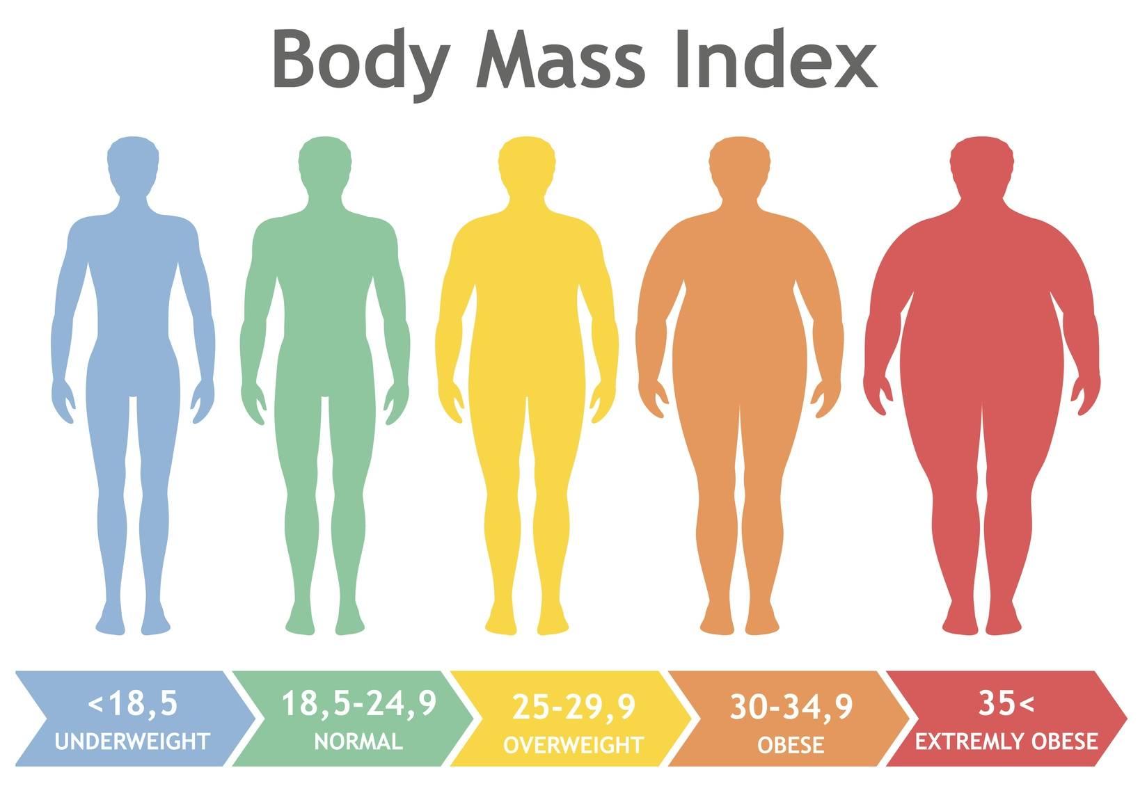 Jakie jest prawidłowe BMI? Kiedy zaczyna się otyłość? Infografika przedstawiająca skalę BMI (Body Mass Index)