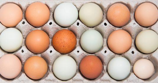 Jak czytać oznaczenia na jajkach?