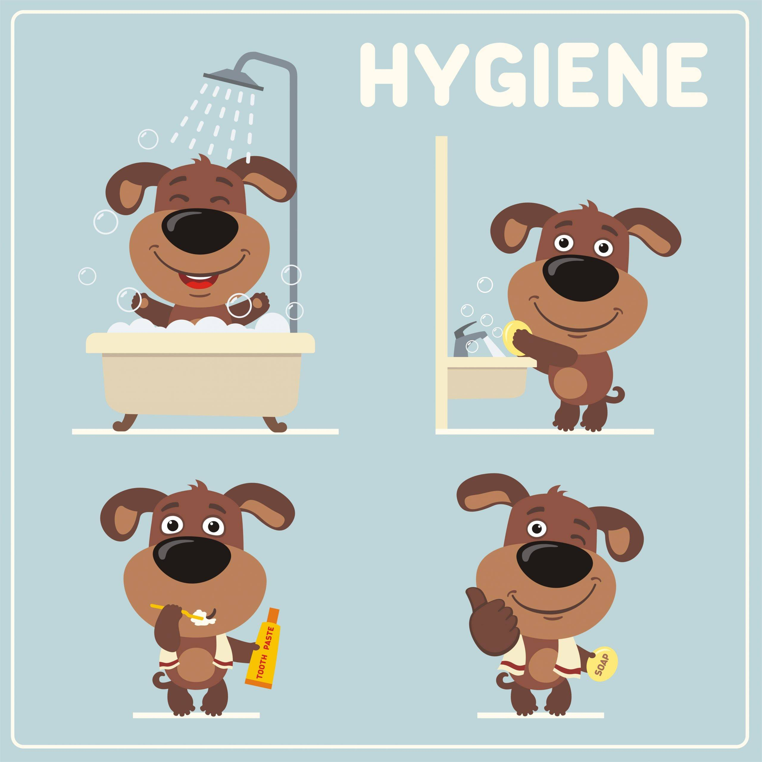Instrukcja dbania o higienę - prezentuje kreskówkowy piesek. Grafika.