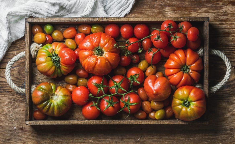 Rozgrzewające przepisy z pomidorami na jesień. Kolorowe pomidory z drewnianej skrzynce.