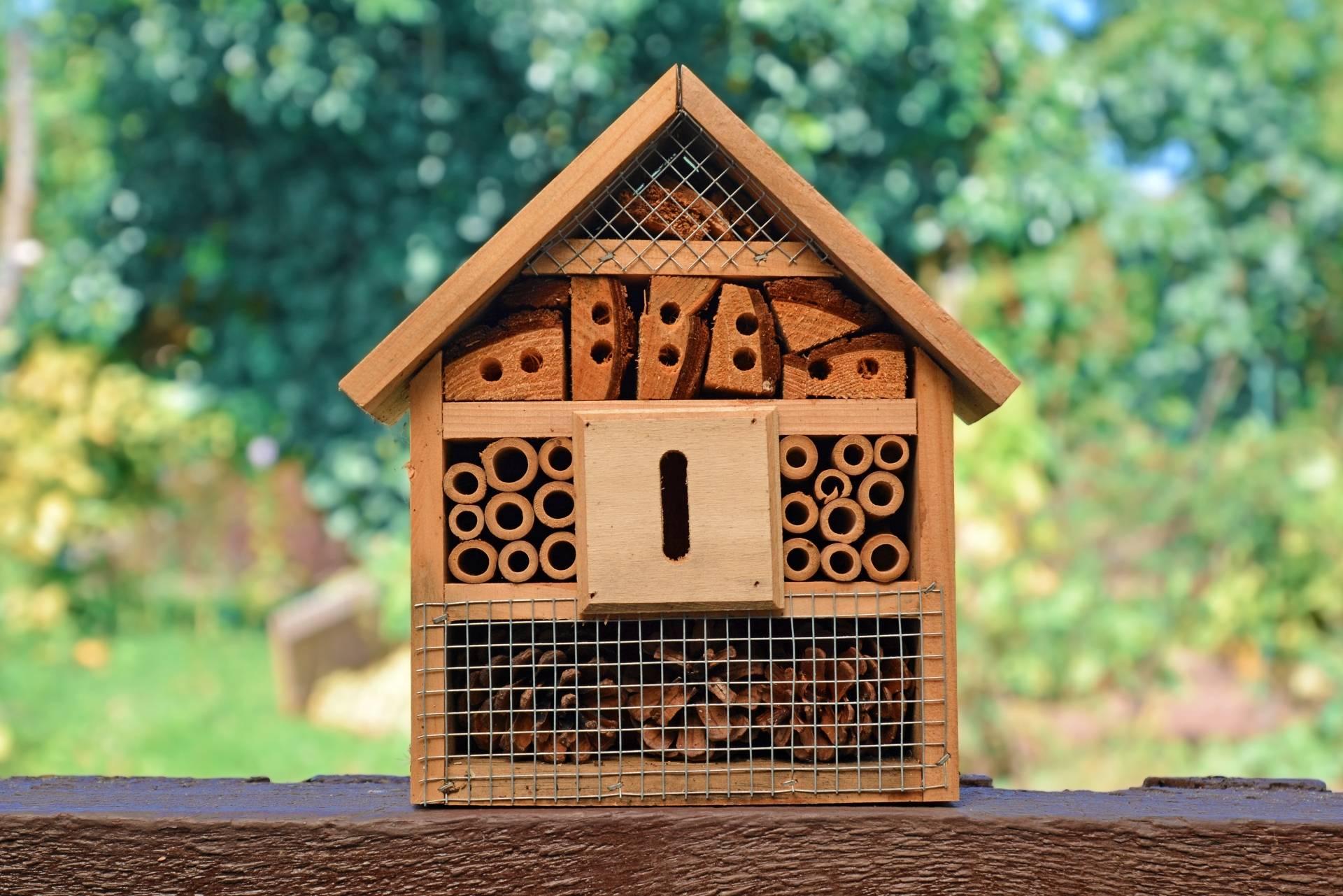 Domek dla owadów - instrukcja jak zbudować.