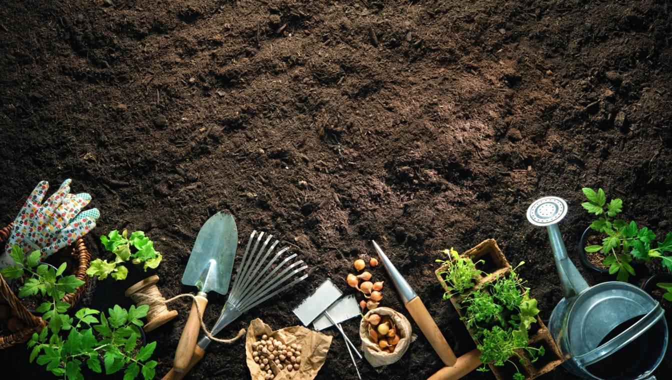 Ekologiczny ogród - jak go stworzyć? jak nawozić glebę i jakie naturalne opryski zastosować? Narzędzia ogrodnicze leżą na ziemi.