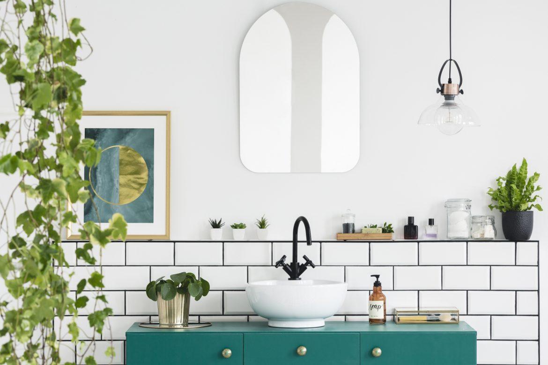 Rośliny do łazienki - jakie będą najlepsze? Jakie kwiaty do łazienki poleca Wojciech Wardecki? Łazienka w roślinach.