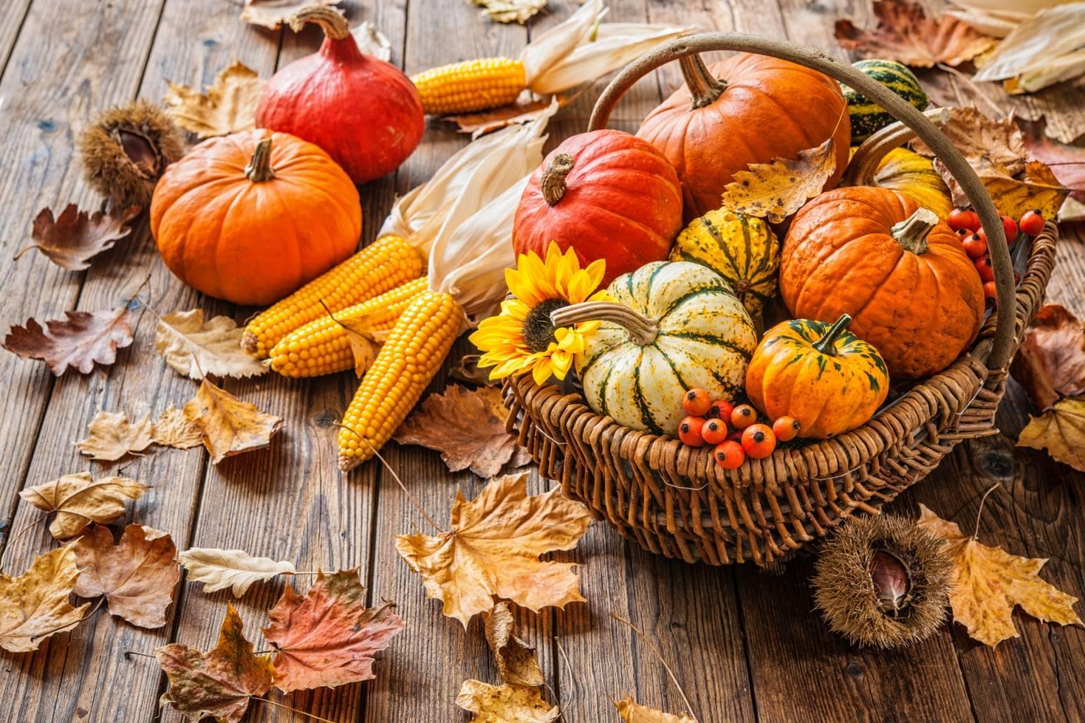 Dynia - jakie ma właściwości? Różne odmiany dyni leżą w koszyku wiklinowym, obok leżą rozrzucone jesienne liście.