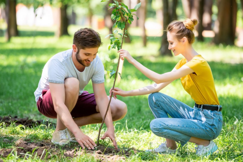 Para młodych ludzi sadzi drzewo. Dominika Zub z Fundacji Las na Zawsze opowiada o tym, dlaczego i jak fundacja sadzi lasy w całej Polsce.