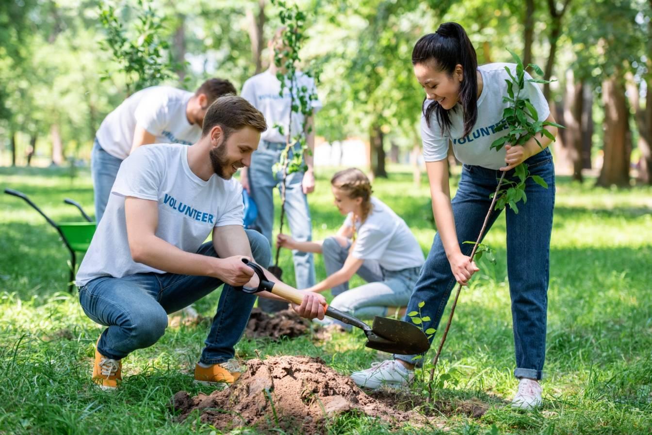 Fundacja Las na Zawsze sadzi drzewa w całej Polsce i tworzy lasy służące naturze, a nie gospodarce. Grupa przyjaciół sadzi drzewa w parku.