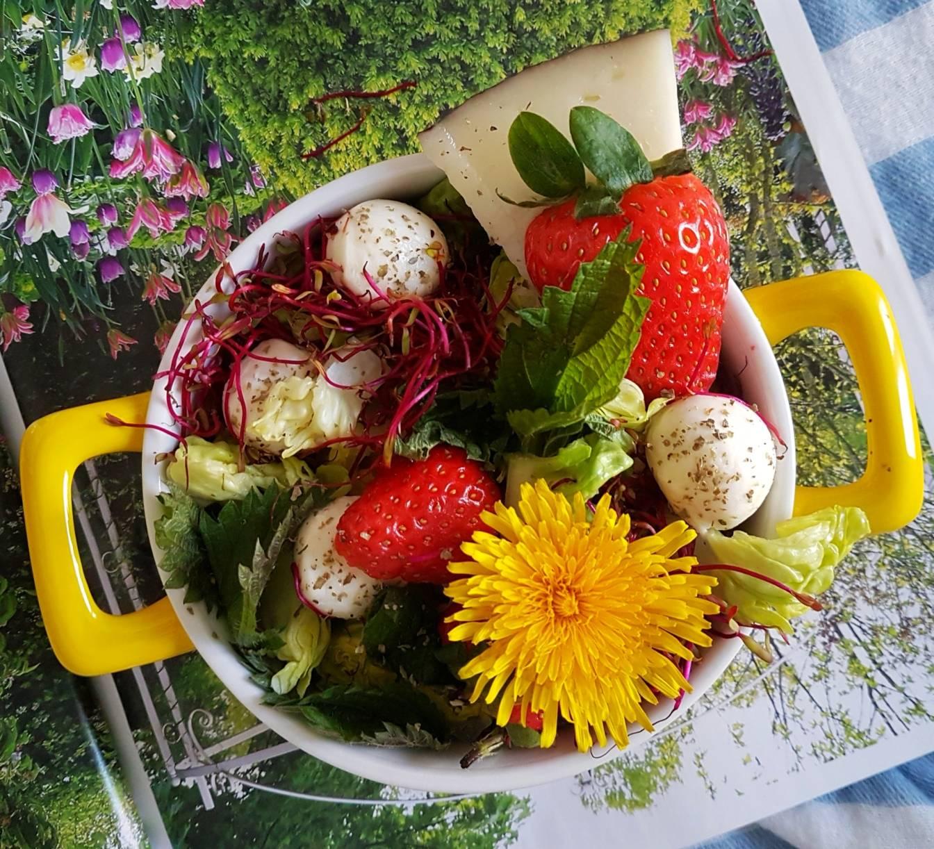 Sałatka ogórkowo-owocowa z pokrzywą i lekkim sosem na bazie szczawiku zajęczego - przepisy na chwasty Agnieszki Żelazko.