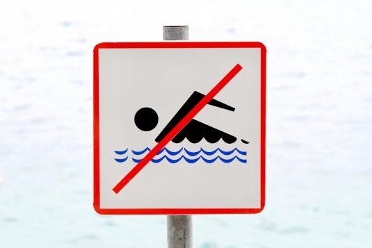 Zakaz kąpieli - sinice!