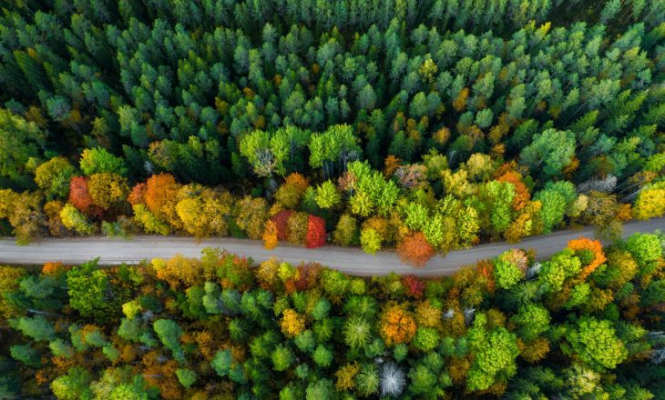 Leave No Trace - jak zminimalizować ślad węglowy?