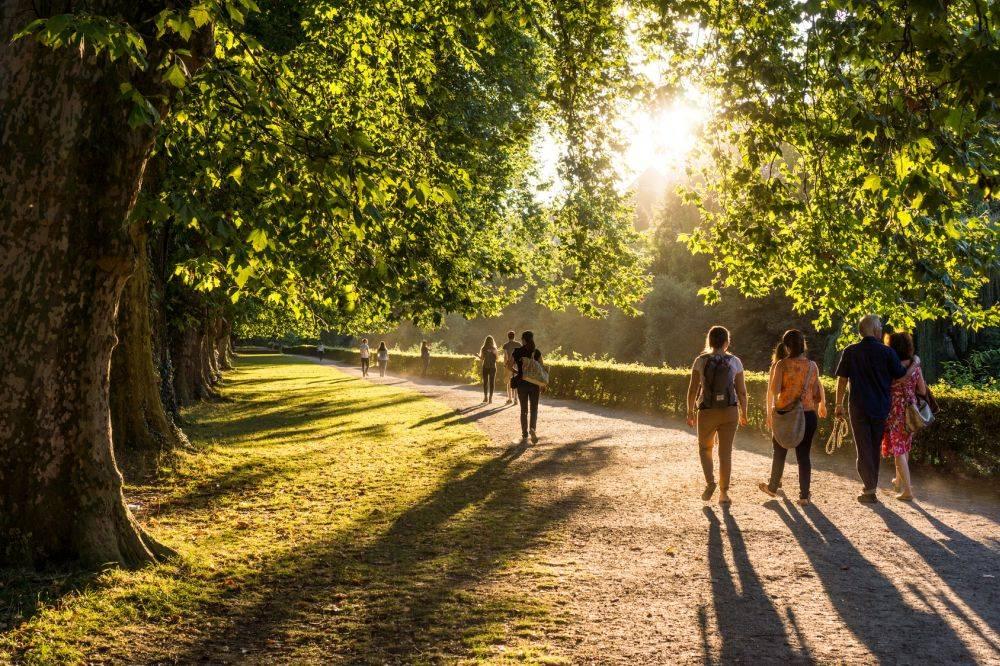 Spacer i codzienna umiarkowana aktywność fizyczna wzmacniają odporność.