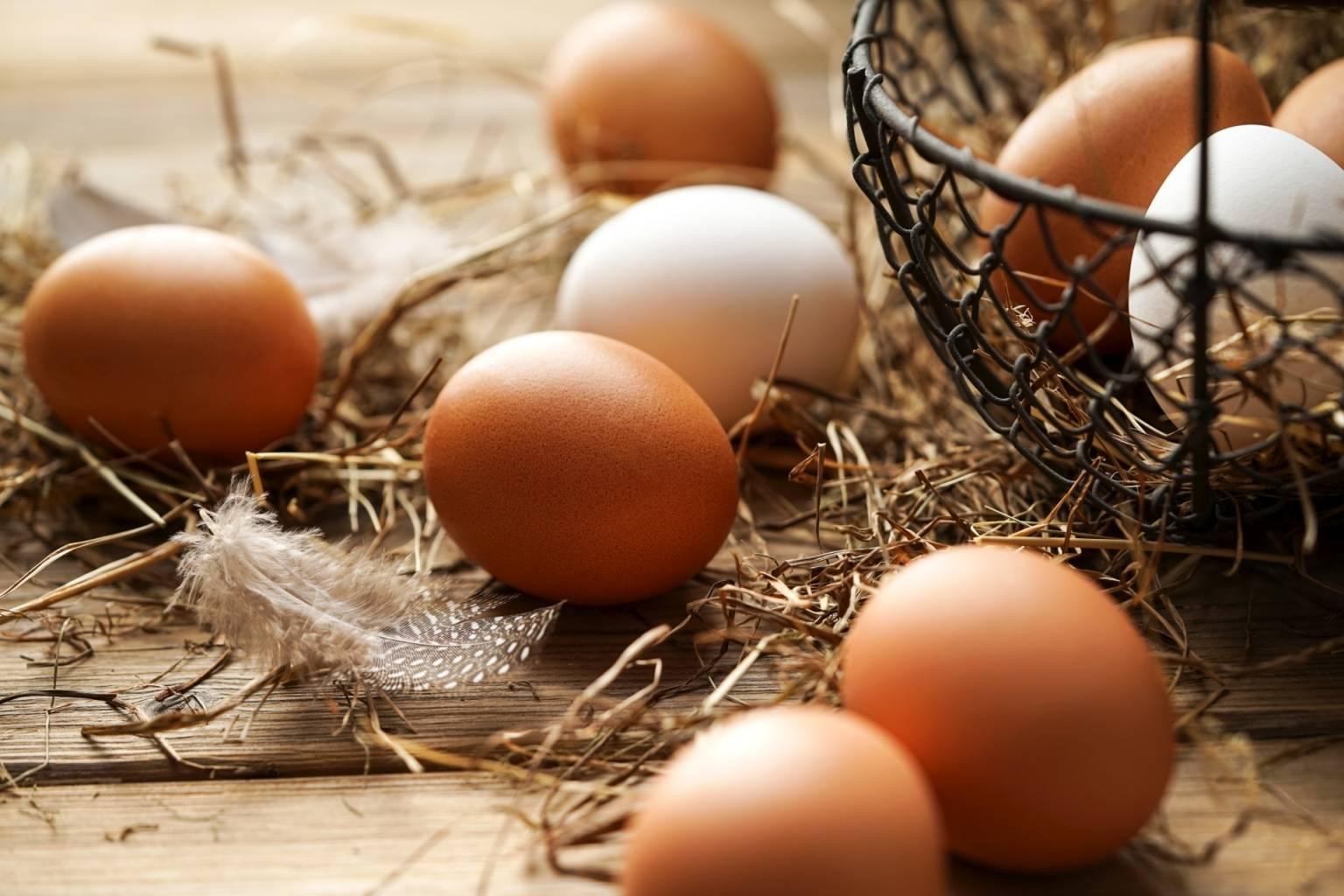 Wegetarianizm - jak wygląda przemysł drobiowy na świecie? Świeże jajka w sianku i drucianym koszyczku na drewnianej desce.