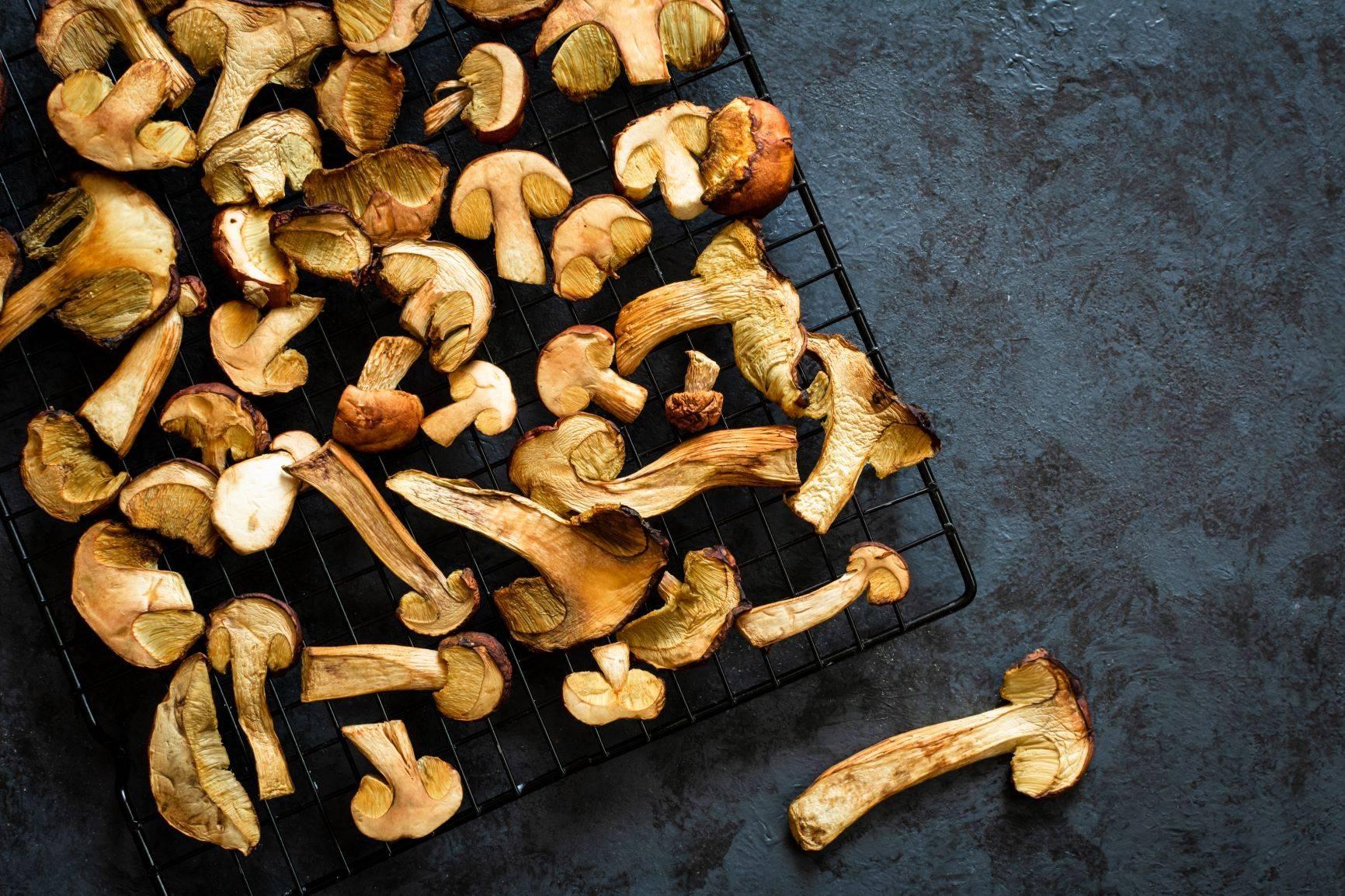 Suszenie grzybów to sposób na niemarnowanie jedzenia. Sprawdź, jak ograniczyć wyrzucanie żywności.