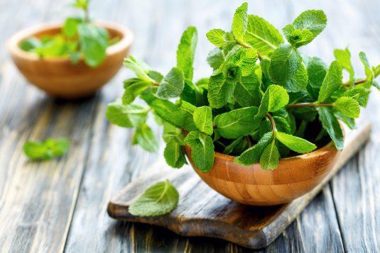 Naturalne sposoby na pleśniawki u dorosłych - płukanka z dodatkiem kropli miętowych lub świeża mięta.