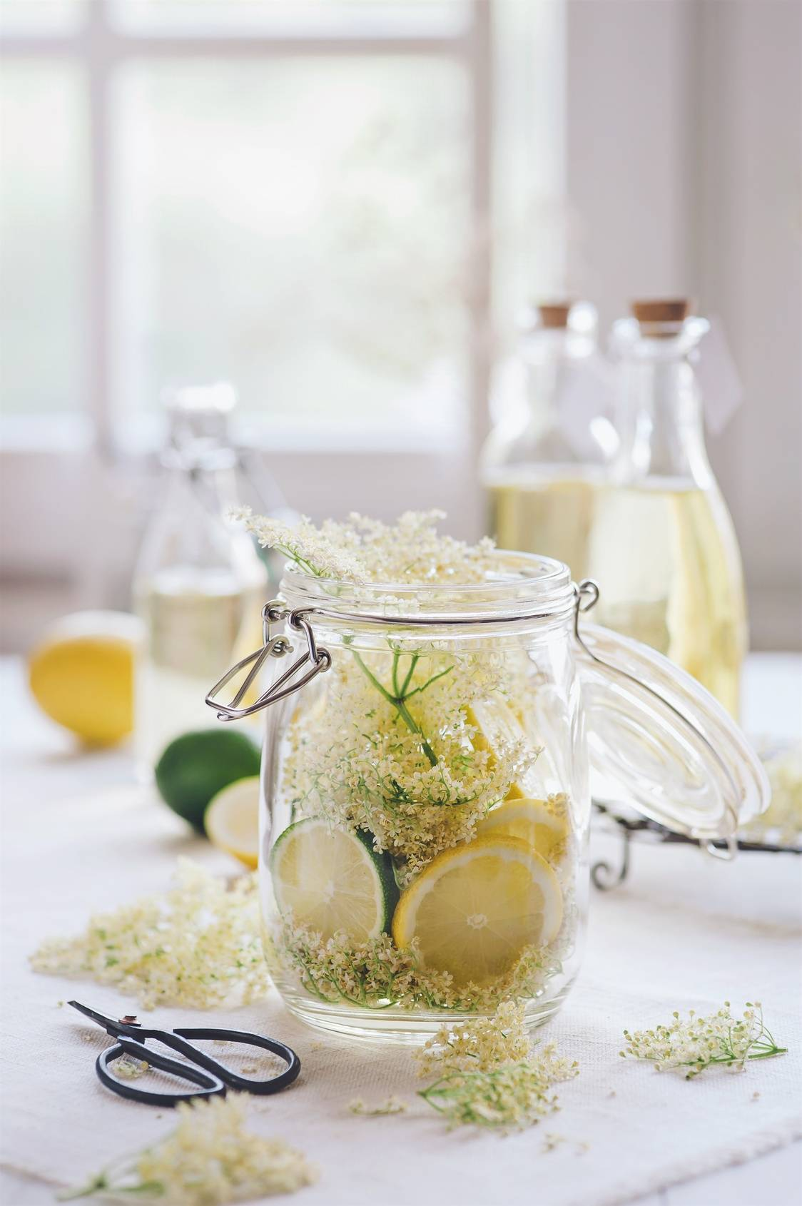 Syrop z kwiatów czarnego bzu. W słoiku leżą kwiaty czarnego bzu, plasterki cytryny i limonki, w tle widać butelki z gotowym syropem. Na białym stole leżą cytrusy, kwiaty bzu i nożyczki.