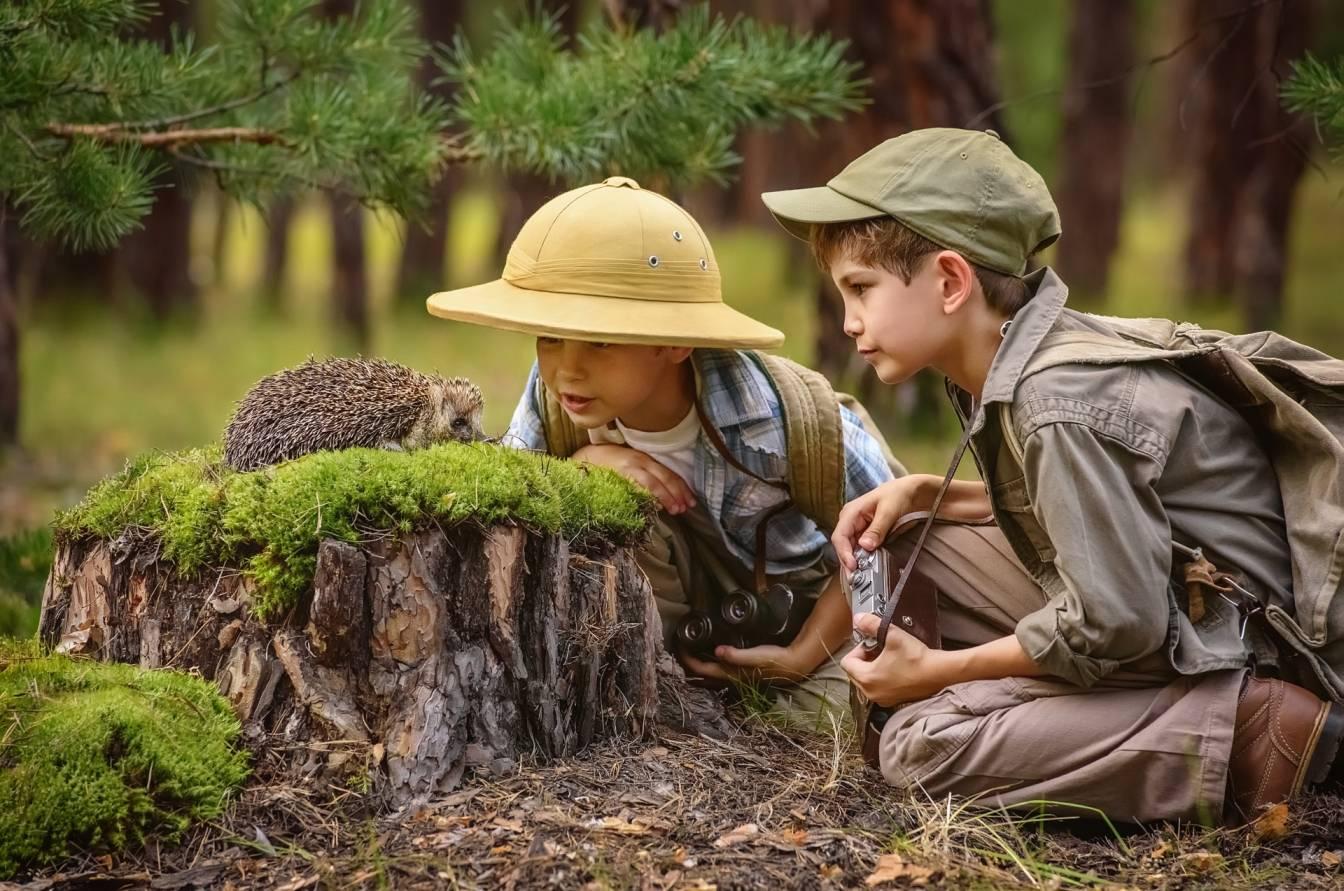 Przedszkole leśne - jakie korzyści daje dzieciom wychowanie wśród natury? Chłopcy obserwują jeża, siedzącego na pieńku w lesie.