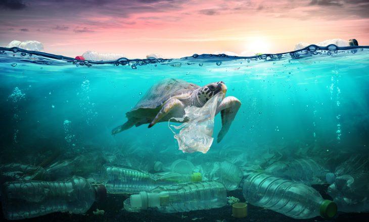 Zero waste - jak zużywać mniej plastiku?
