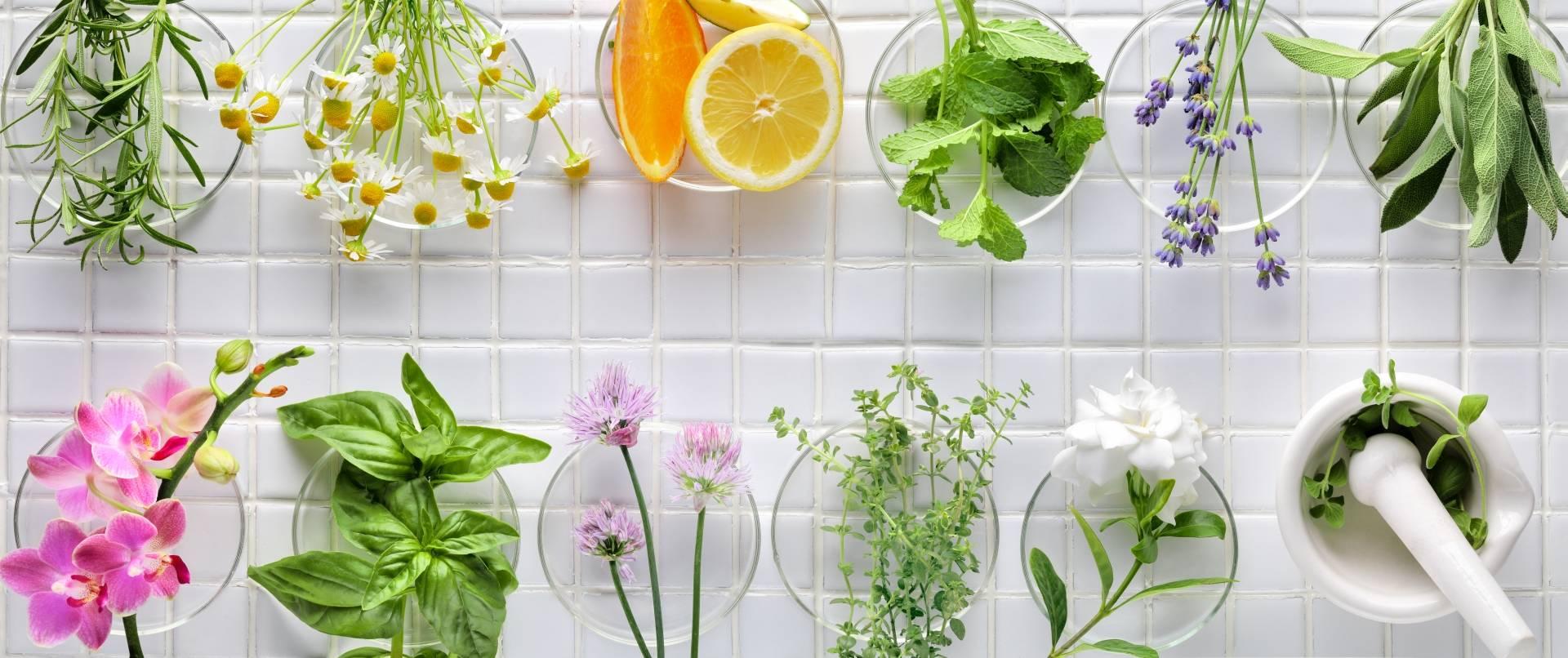 Leki syntetyczne a leki roślinne.