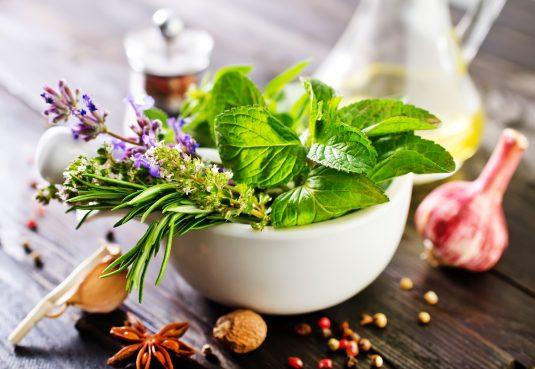 Domowa apteczka ziołowa - jakie zioła powinny się w niej zawierać?